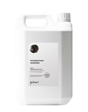 5α Intensive Anti-Oil Amino Acid Shampoo 220ml