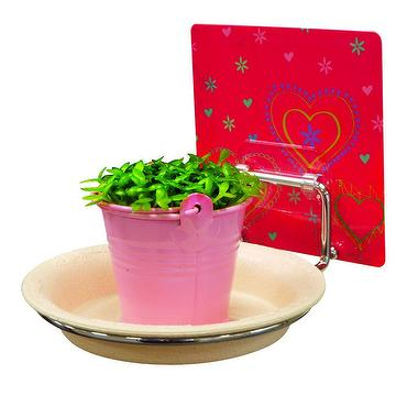 Indoor self-adhesive wall type reusable multi-function Plant Flower Holder