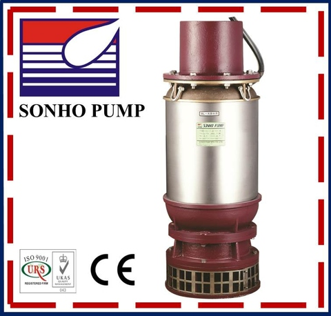 Large Axial Flow Pump