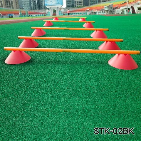 AGILITY LADDER WITH CONE HURDLE