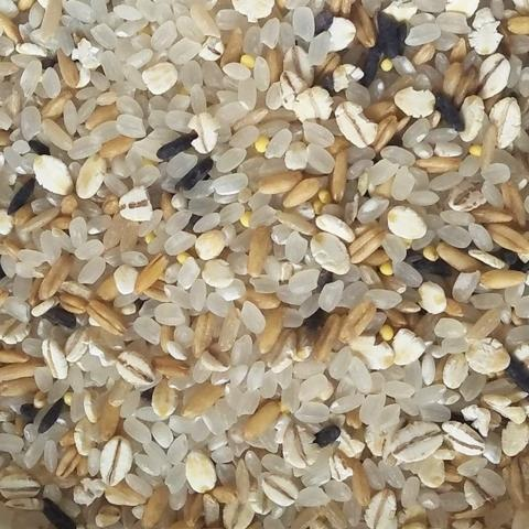 For Shervon Grain Rice Select Royal Blend (5 Grains Mix)