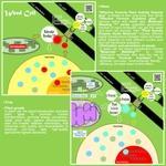 Principle of Molecular Weeding tech series