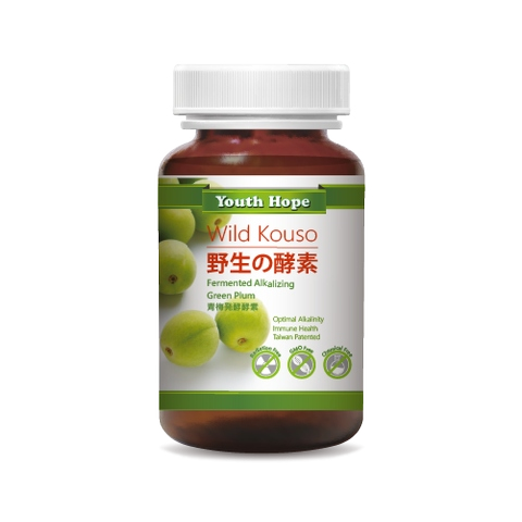 Fermented Alkalizing Green Plum青梅発酵酵素