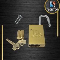 SFIC Interchangeable Core Aluminum Padlock