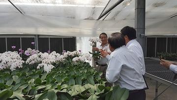 2016/12/13 With Japan client visit the Orchid Farm | CORE CHEMICAL INC
