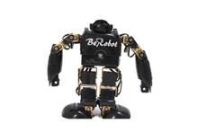 BeRobot Robotic  MAKER toy 15DOF black