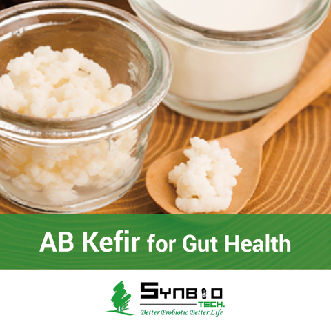 AB-Kefir Probiotics Powder