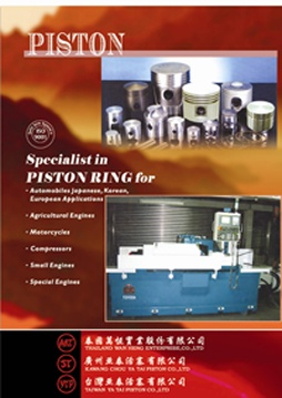 Piston and Piston Ring