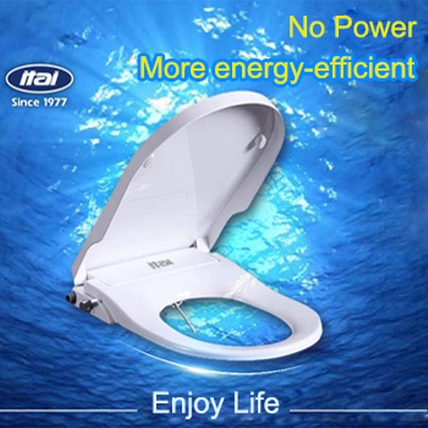 Marvelous No Power Bidet Seat Toilet Lid Toilet Seat Cover Lid Manual Machost Co Dining Chair Design Ideas Machostcouk