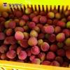 Sugary Litchi/ Fresh Lychee (Yu He Bao)