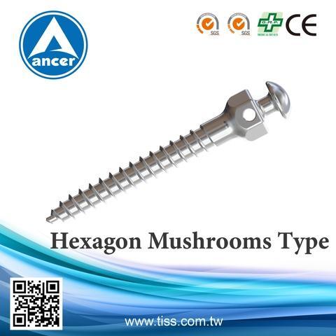 Hexagon Mushrooms Type (Anchorage Screws)