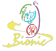 BIONIC PRIVATE LIMITED