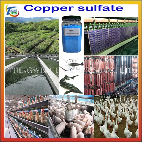 Taiwan Copper Sulphate, Electroplating grade, Feed grade Copper