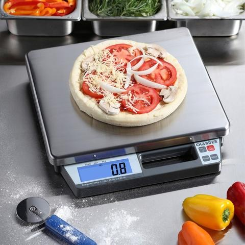 R250 Portable Bench Scale