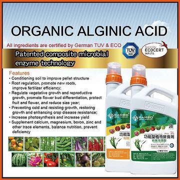 RAMBO Organic ALGINIC ACID