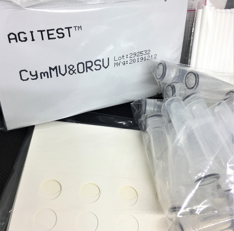Rapid test kit components package