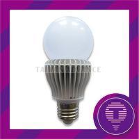 High brightness 10W COB Led Omni Light Bulb