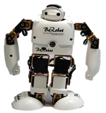 ODM 15DOF_white&black&golden Robot TOY