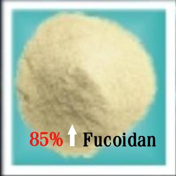 褐藻糖胶(岩藻聚糖硫酸脂)