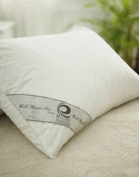 Microlite-MF77 European High-Tech Pillow