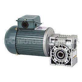 Taiwan hollow shaft worm gear motor taiwan precision for Hollow shaft gear motor