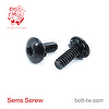 Machine Screw SEMS Plain Washer, Custom head-Machine Screw