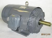 Outdoor Induction Motor