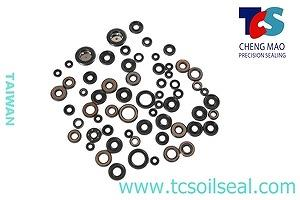 TCS GAS SPRING SEAL