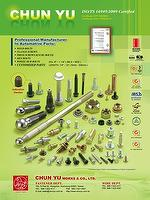Automotive Fasteners,Special Screw & Bolt