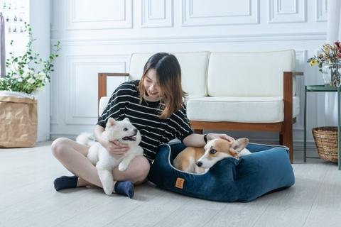 LIFEAPP Luxury Bed, Dog Bed, Pet Bed