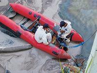 Skimmer Boat淺灘型充氣浮油回收船