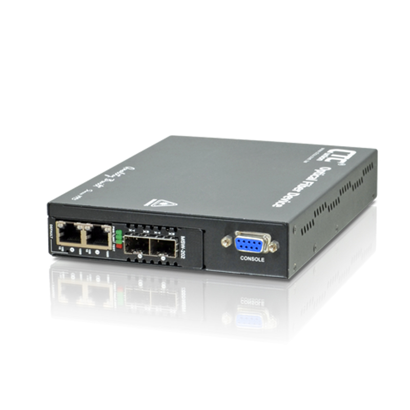 L2+ Carrier Ethernet Switch (EDD) - MSW-202
