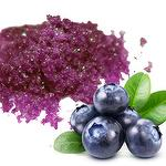 SOD-Like Blueberry Fermented Concentrate powder