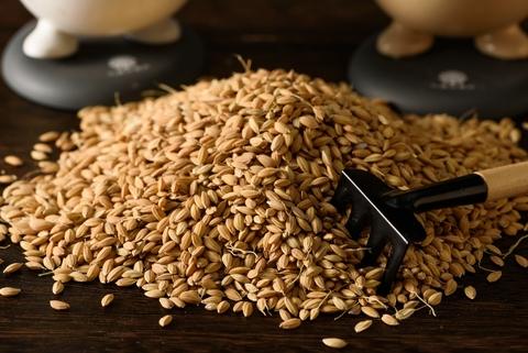 Xingjian Long Fiber Rice Organic 2Kg