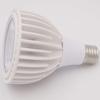 IP33 PAR 30 Taiwan Epistar COB LED bulb