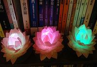 Led_lotus BI_lotus001 (silk cloth)
