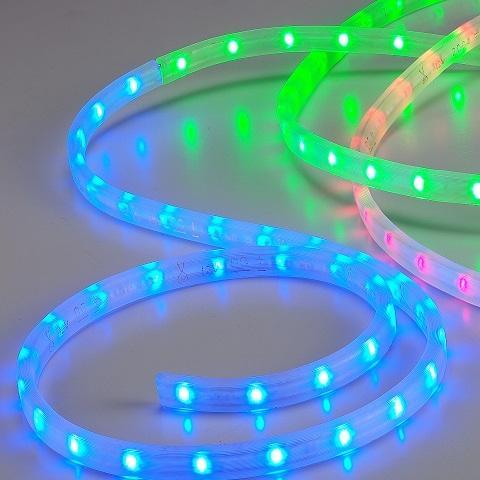 Taiwan DC 24v Flexible Neon Light Strips | Taiwantrade