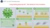 選擇理想的空氣濾網 - 抗微生物