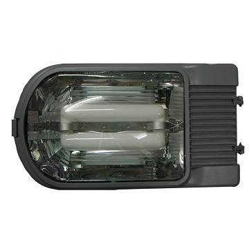 LVD Street Luminaire