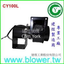 CY100L
