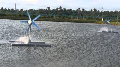 Fish Farm Wind Turbine Aerator