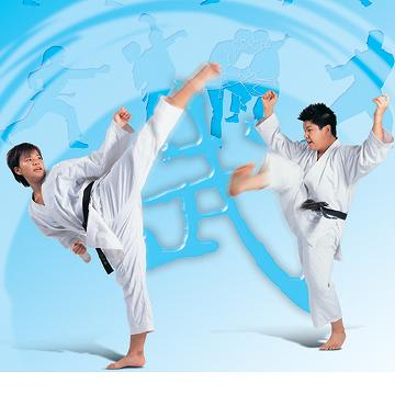 Taiwan MARTIAL ARTS UNIFORMS (JUDO, KARATE, TAEKWONDO, KENDO