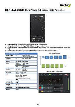 High Power 2.1 Digital Plate Amplifier