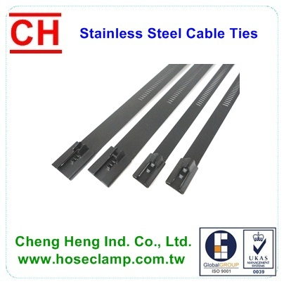 Stainless steel Ladder Cable ties