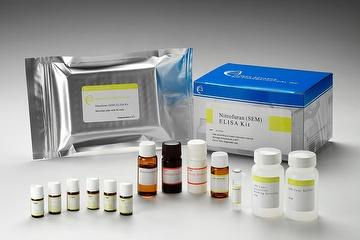 Nitrofurazone (SEM) ELISA Diagnostic Kit