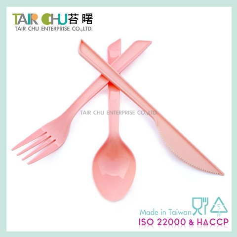 Large Plastic Spoon