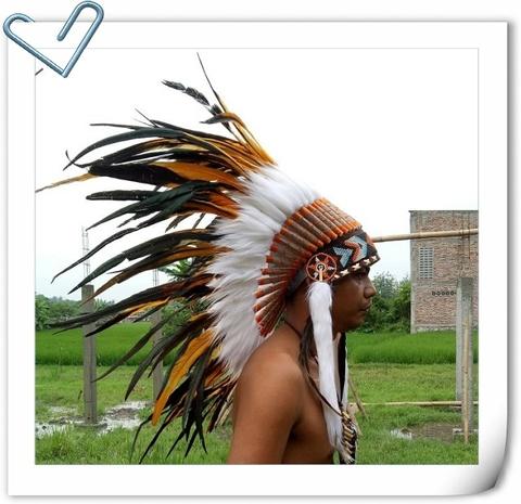 6f9c8848811 Taiwan Native American indian war bonnet