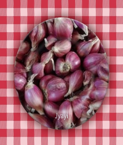 Fresh Shallot Onion Cooking Season Material Supplier