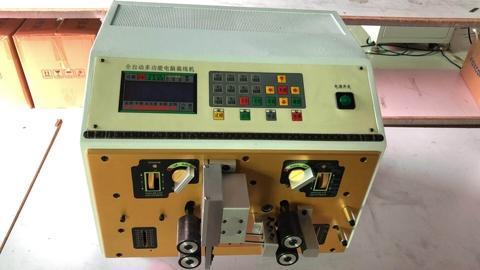 ST-220  Automatic computer peeling machine