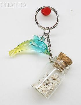 Dolphin Sand Seashell Bottle